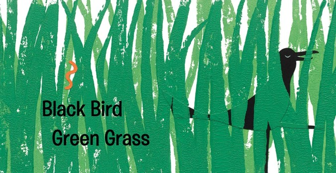 black bird green grass